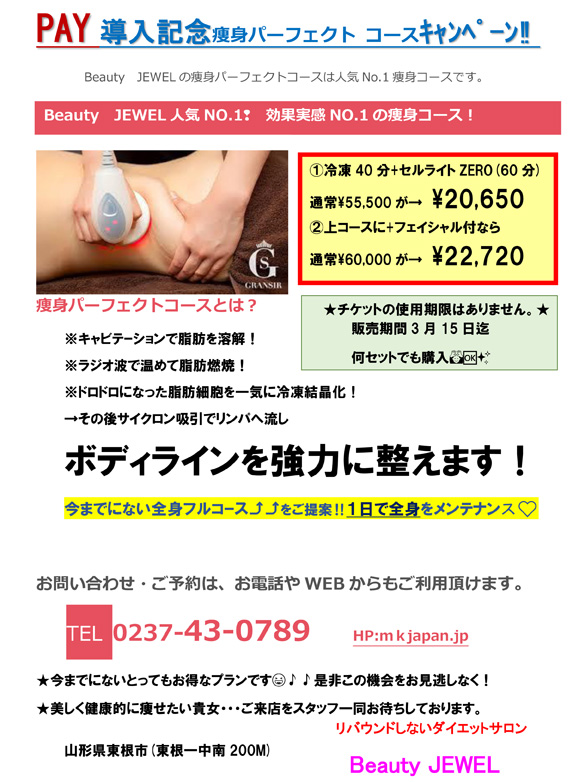 PAY導入記念痩身パーフェクト コース